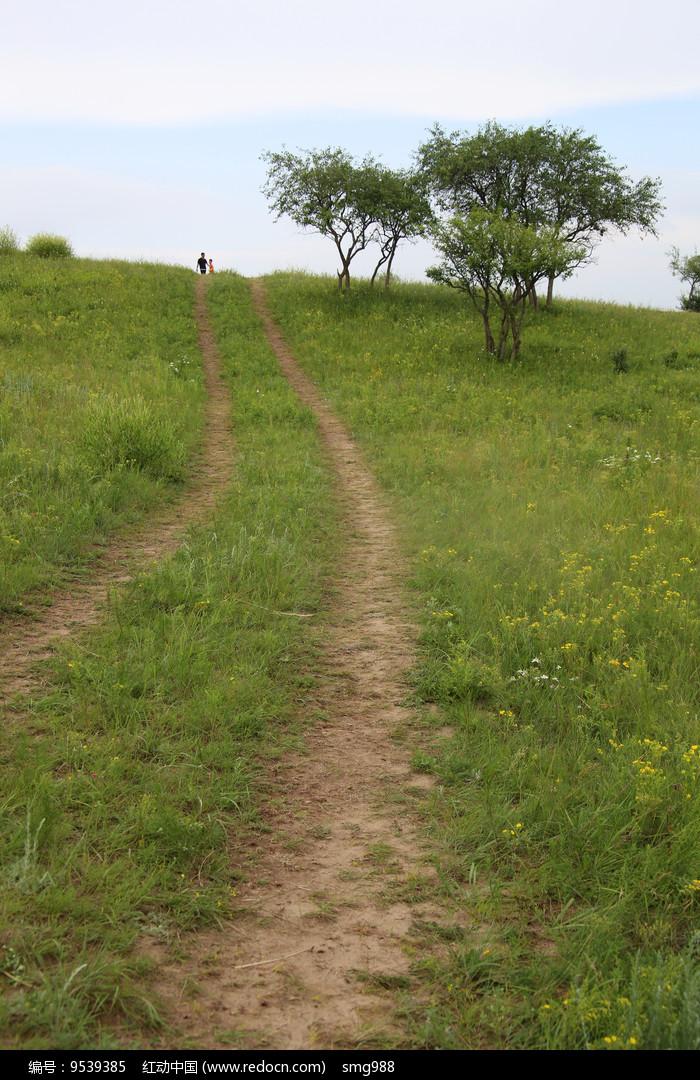 山坡上的车辙小路图片