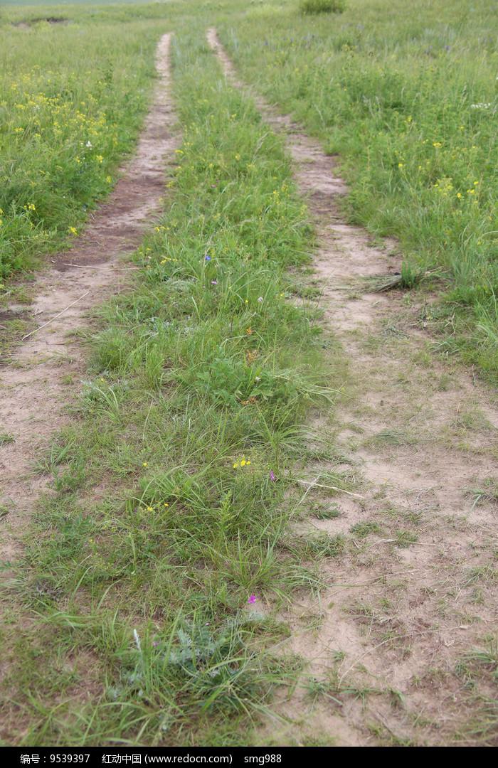 双车辙印记的草地图片