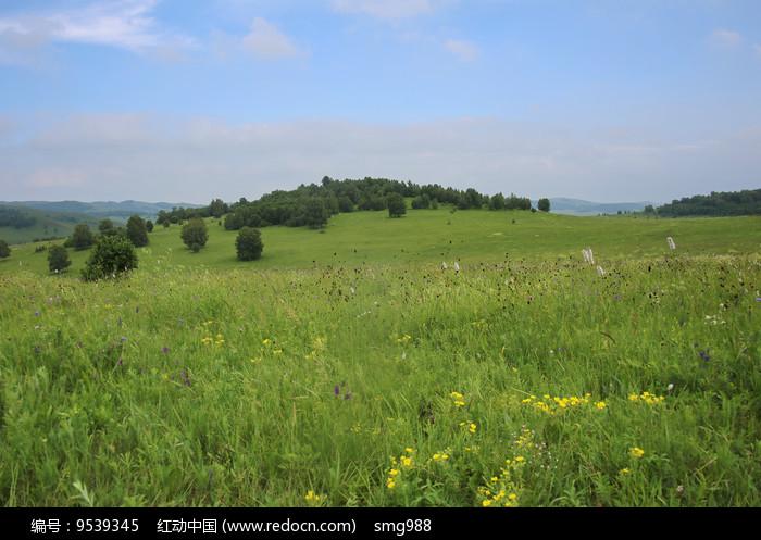 乌兰布统的草原美景图片
