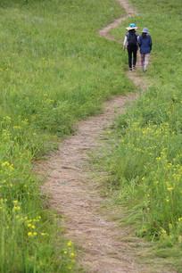 草地小路上踏青的游客