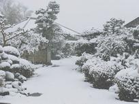 日式庭院雪景
