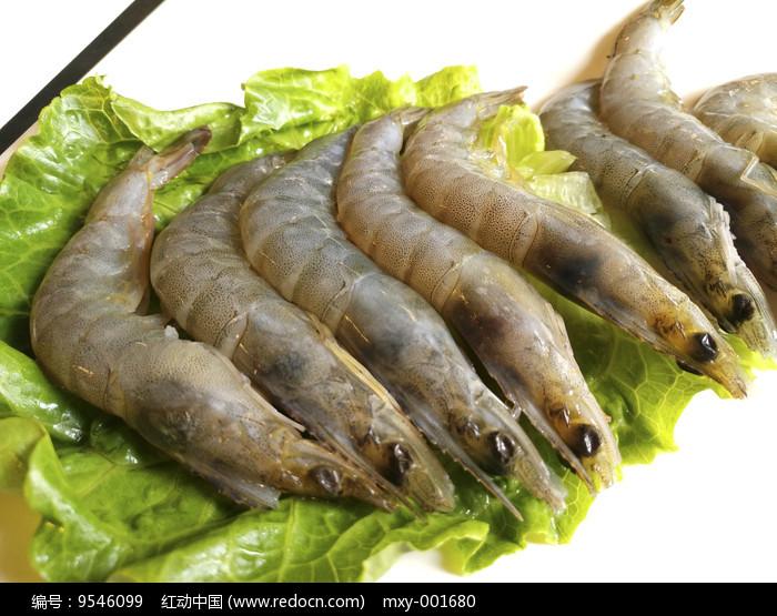 鲜美基围虾图片