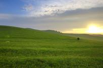 草原黄昏日落