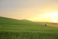 草原山坡日落暮色