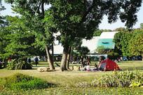 华南植物园园林风光