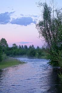 林中小河暮色风景
