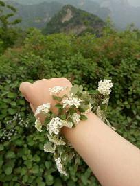 带花环的手臂
