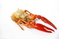小龙虾肉鲜美