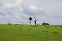 草坡上遛狗休闲旅游