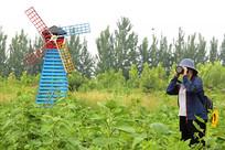 大风车田园里摄影师