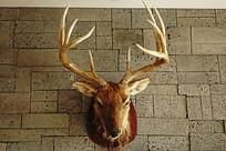 鹿头鹿角造型装饰品