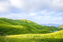 美丽的高山草场