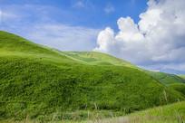 美丽的高山草原