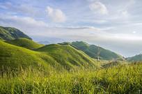 山顶青青草场