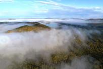 航拍林海云雾