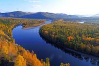 秋季原始森林河金色树林