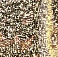 金黄色皮革斑点图