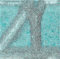 绿色黑色皮革纹理斑块图