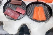 金枪鱼和鲑鱼
