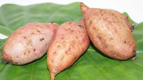 新鲜板栗红薯