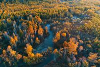 航拍穿越金秋树林的河流