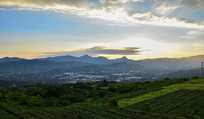 绿色田园和朦胧远山