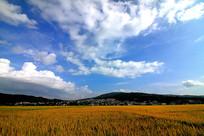 万里晴空朵朵云
