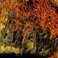 抽象树林火焰油画背景