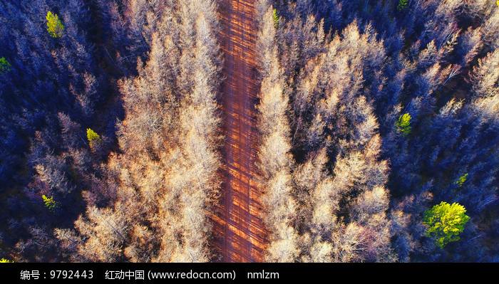 山路风景(航拍)图片