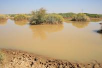 戈壁动物饮水水源地