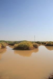 戈壁中的水塘动物饮水水源地