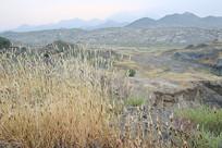 待治理的废弃矿山地貌
