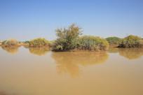 戈壁滩动物水源地水池