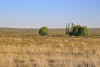 内蒙戈壁地质地貌