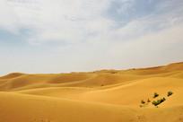 沙漠起伏地貌