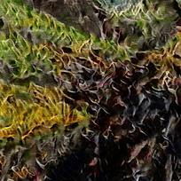 抽象欧式装饰火焰油画