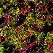抽象鲜花店铺装饰油画