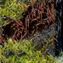 抽象自然丛林装的火焰油画