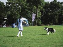 遛狗摄影图