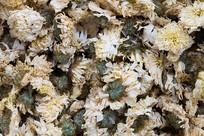 传纺工艺净制菊花