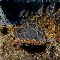 抽象火焰纹理背景图片