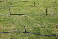 农业技术节水绿地