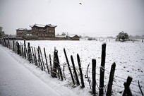 雪中的康定甲根坝