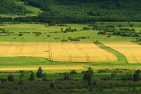 多彩的农田景观