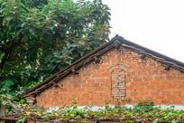 农村里老旧的树下房子