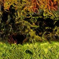 丛林风景火焰背景