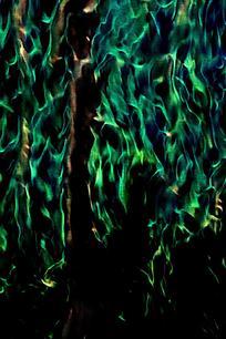 唯美绿色火焰背景