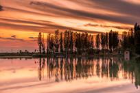夕阳下的鱼塘