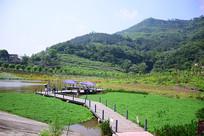 万州石桥水乡的青山绿水