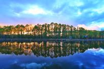 森林湖夕阳风景